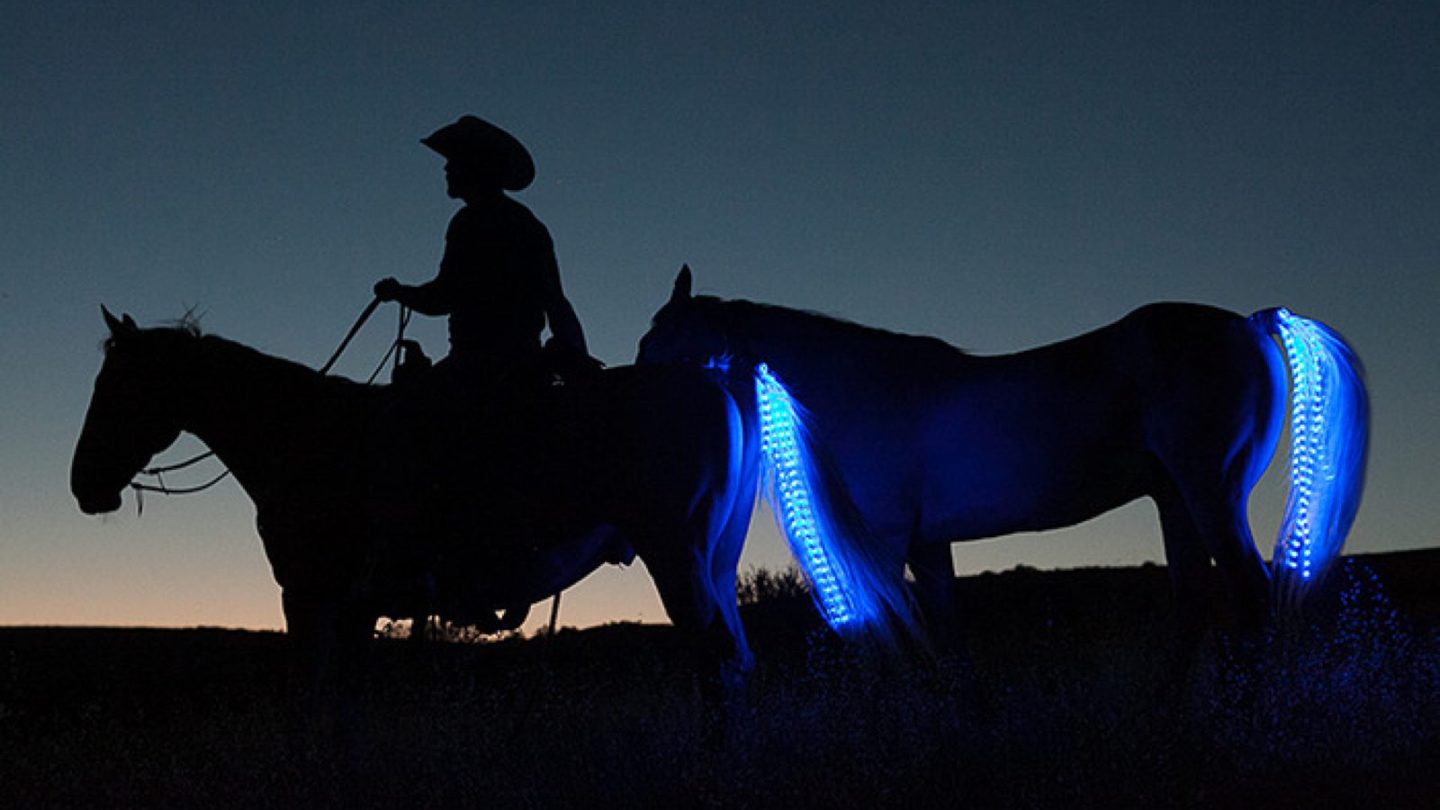 Turn A Horse Into A Tron Motorcycle With Neons… For Safety!