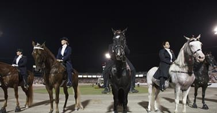 The Cruelest Horse Show on Earth